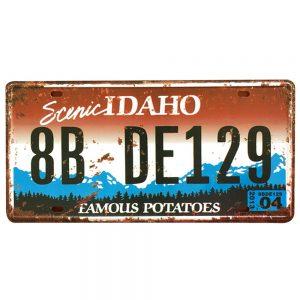 Numar auto decorativ placa metalica vintage Idaho 30x15cm