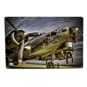 Placa metalica avion Liberty Belle poster multicolor vintage 30x20cm