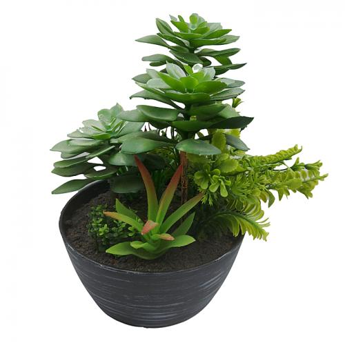 Aranjament plante suculente artificiale Trisha