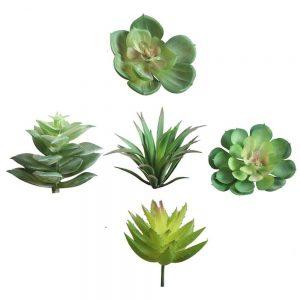 Set 5 flori suculente artificiale Texas