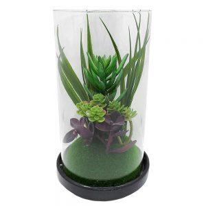 Plante suculente artificiale Aranda, Terrarium 20cm