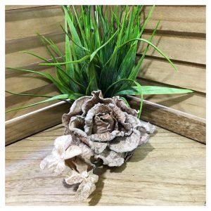 Decoratiune brad Ember trandafir maro